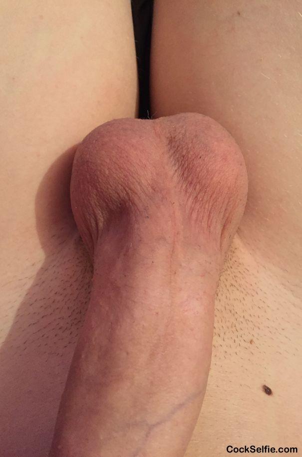 Seda Arab 18 xxx wanna fuck
