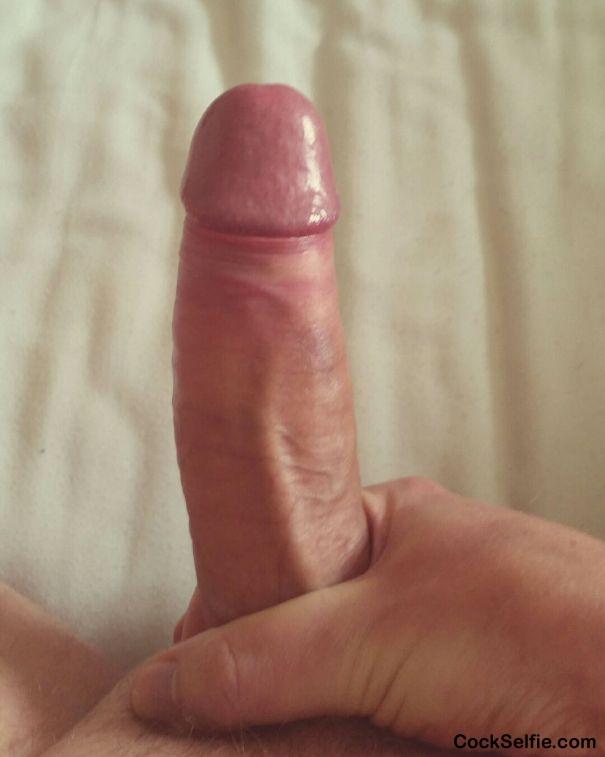 Selfie of my stiff cock amusing information