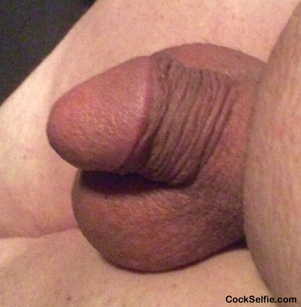 My Little Cock - Posted To Cock Selfie-8041