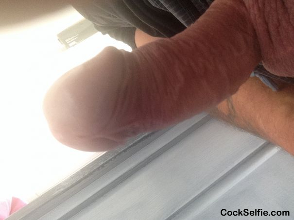 Anybody for lunch - Cock Selfie