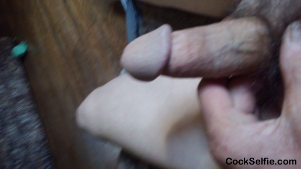 Jacking off to cocks - Cock Selfie