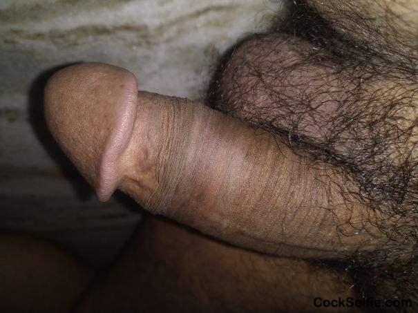 Need women partner - Cock Selfie