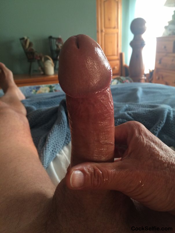 Ready for you .... - Cock Selfie