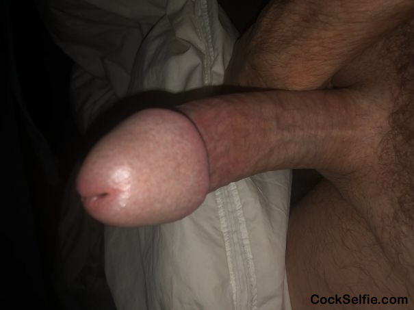 Really hard . - Cock Selfie