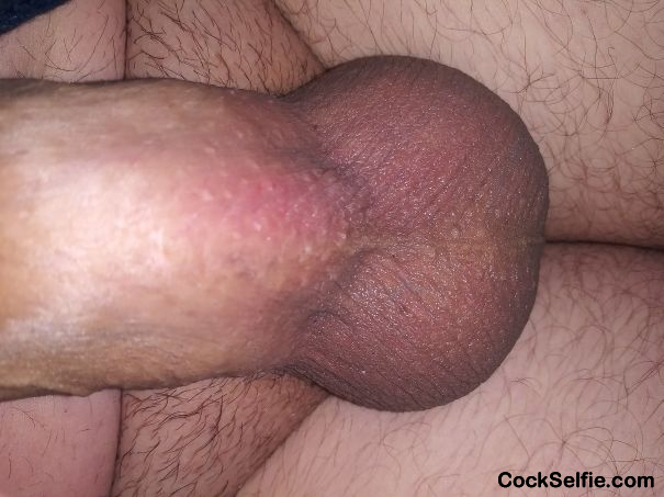 Who Loves. My balls!! - Cock Selfie