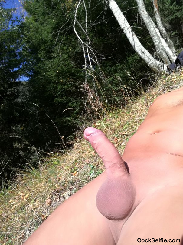 Outdoors shaved cock - Cock Selfie