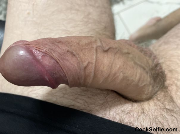Just Getting started - Cock Selfie