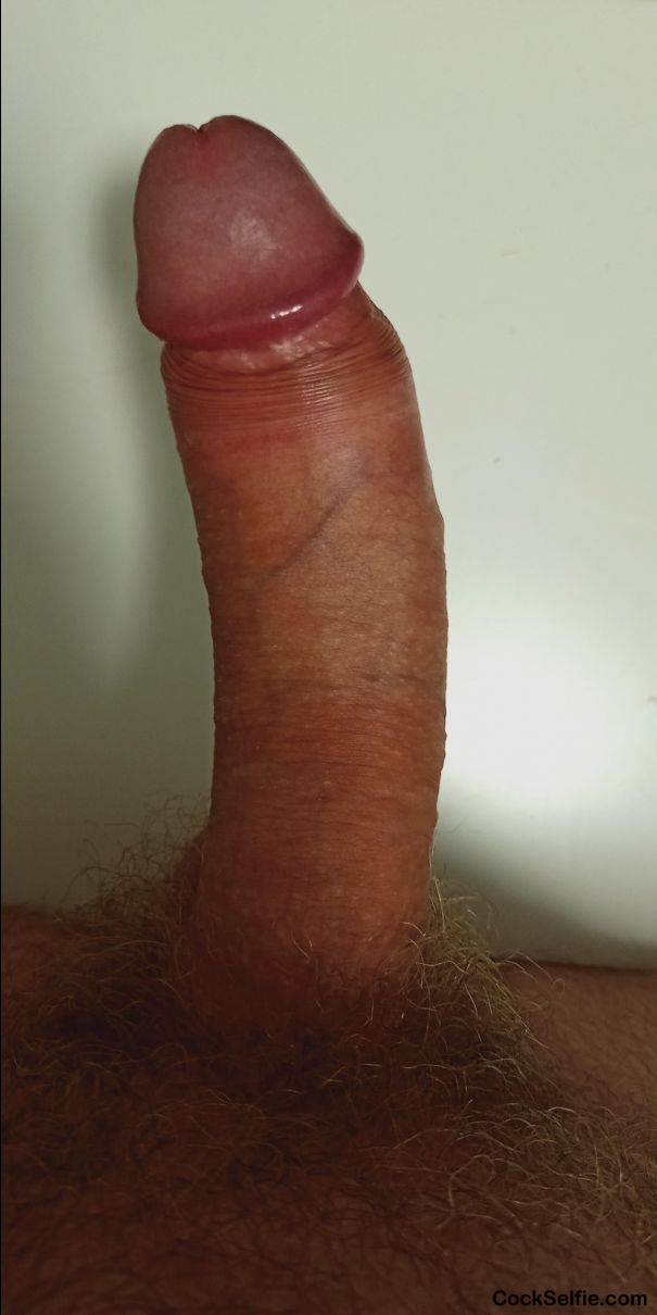 Please vote or comment - Cock Selfie