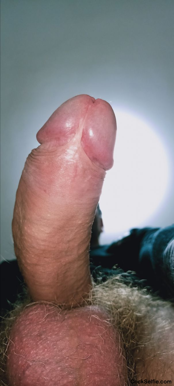 Please rate or comment - Cock Selfie