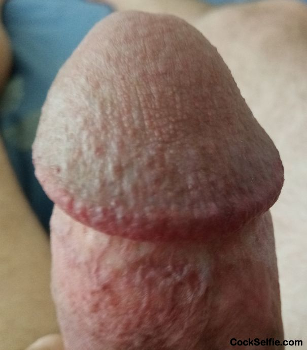 My Cock Head Wants to Rub On A Clit........ - Cock Selfie
