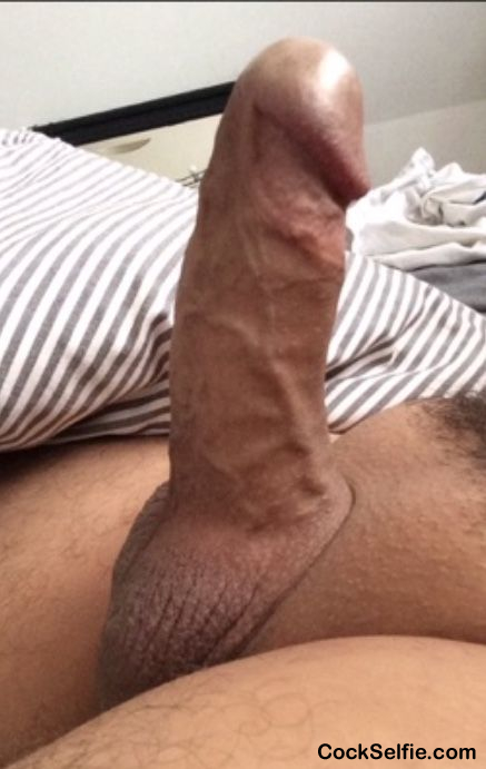 Freshly shaved cock and balls.. what do you think? - Cock Selfie